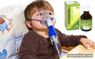 Ингаляции с хлорофиллиптом детям: инструкция по применению