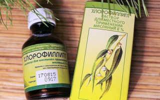 Ингаляции с хлорофиллиптом: инструкция по применению