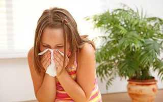 Аллергия на пылевого клеща у ребенка: как распознать, чем лечить