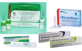 Прививка детям от клеща