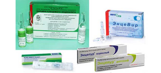 Прививка от энцефалита детям